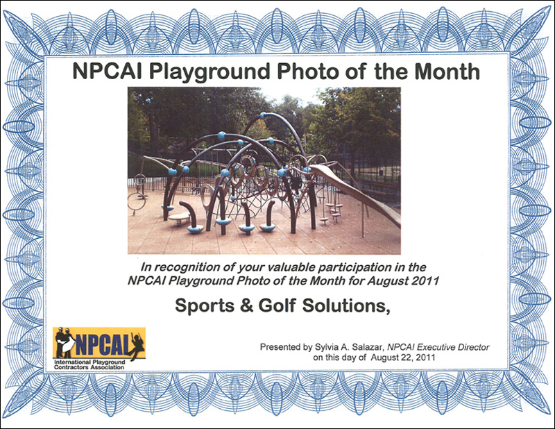 NPCAI Playground of the Month